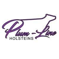 Plum-Line Holsteins