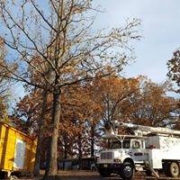 Harper TREE Service