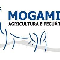 Mogamilk, Agricultura e Pecuária, Lda
