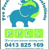 Pro Pressure Cleaning