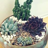 KJR Garden Eco-Care