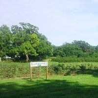 Endicott Farms