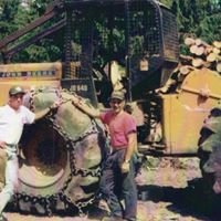 Gorczyca and Son Logging