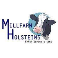 Millfarm Holsteins