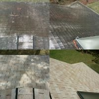 East Coast Pressure Cleaning & Home Solutions