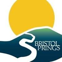 Bristol Springs, LLC