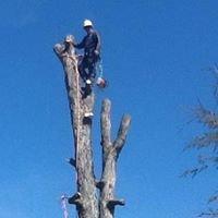 Beaver Tree Service LLC