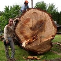 North Woods Tree Service Inc.