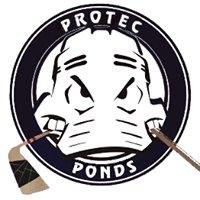 Protec Ponds Ice Skating Center