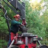 E & L Logging