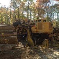 Boggs Logging