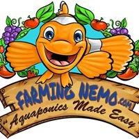 Farming Nemo Aquaponics