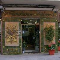 Floristería Tulipán