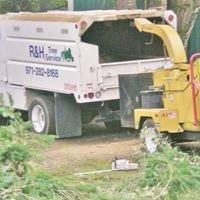 R & H Tree Service