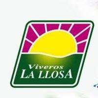 Viveros La Llosa Floristeria-Jardineria