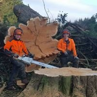 Barbers tree services