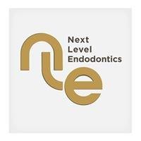 Next Level Endodontics - Putting theory into practice