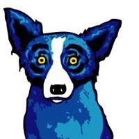 Bluedog Capital Partners, LLC