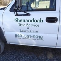 Shenandoah Tree Service and Lawn Care