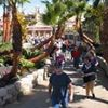 San Diego Home/Garden Shows