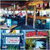 Roland Martins Marina Tiki Bar