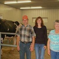 Fustead Holsteins