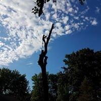 GE Tree Service Inc.