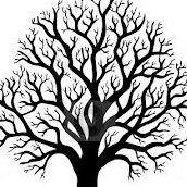 Fulton Tree Service Inc