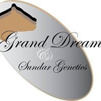 Grand Dream & Sundar Genetics