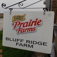 Bluff-Ridge Holsteins