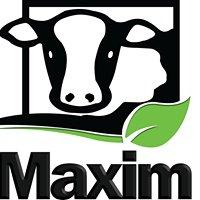 Maxim International Pvt Ltd