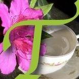 Tea Time Treasures