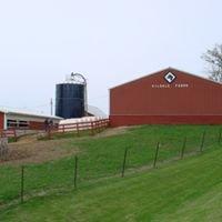Gildale Holsteins