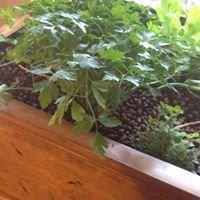 Aquaponic Gardening Systems