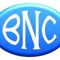 Banque Nationale de Credit - BNC