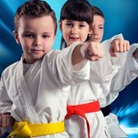 Dojo Martial Arts & Awesome Youth Sports
