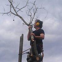 Possum's Tree Services