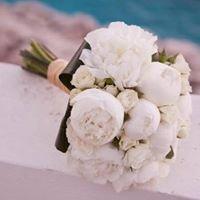 Στολισμός Διακόσμηση Γάμου Βάπτισης  Flowers-Bonsai Collection