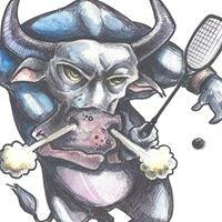Gove Squash Club