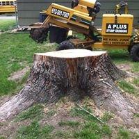 A+ Stump Grinding