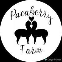 Pacaberry Farm
