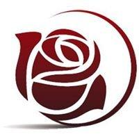 Rose City Website Design