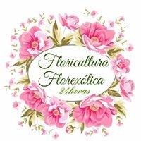 Floricultura Florexótica