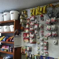The Speckled Fish Bait and Tackle