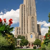 Interdisciplinary work at Pitt