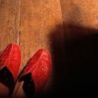 www.shoecellar.com