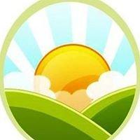 مجتمع الهندسة البيئية Environmental  Engineering  Society