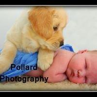 Pollard Photography
