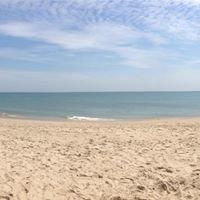 Kitty Hawk Beach - Outer Banks
