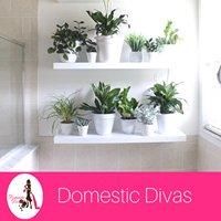 Domestic Divas
